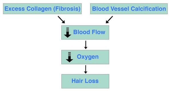 Fibrosis Calcification Hair Loss