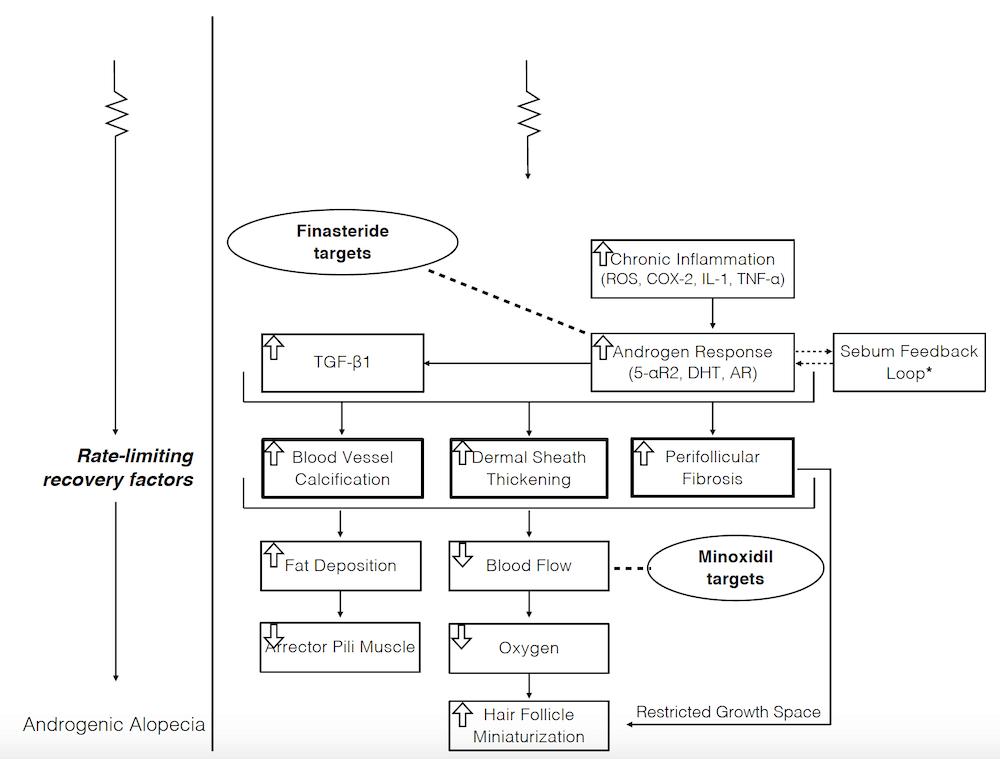 Figure-3-AGA-Pathology