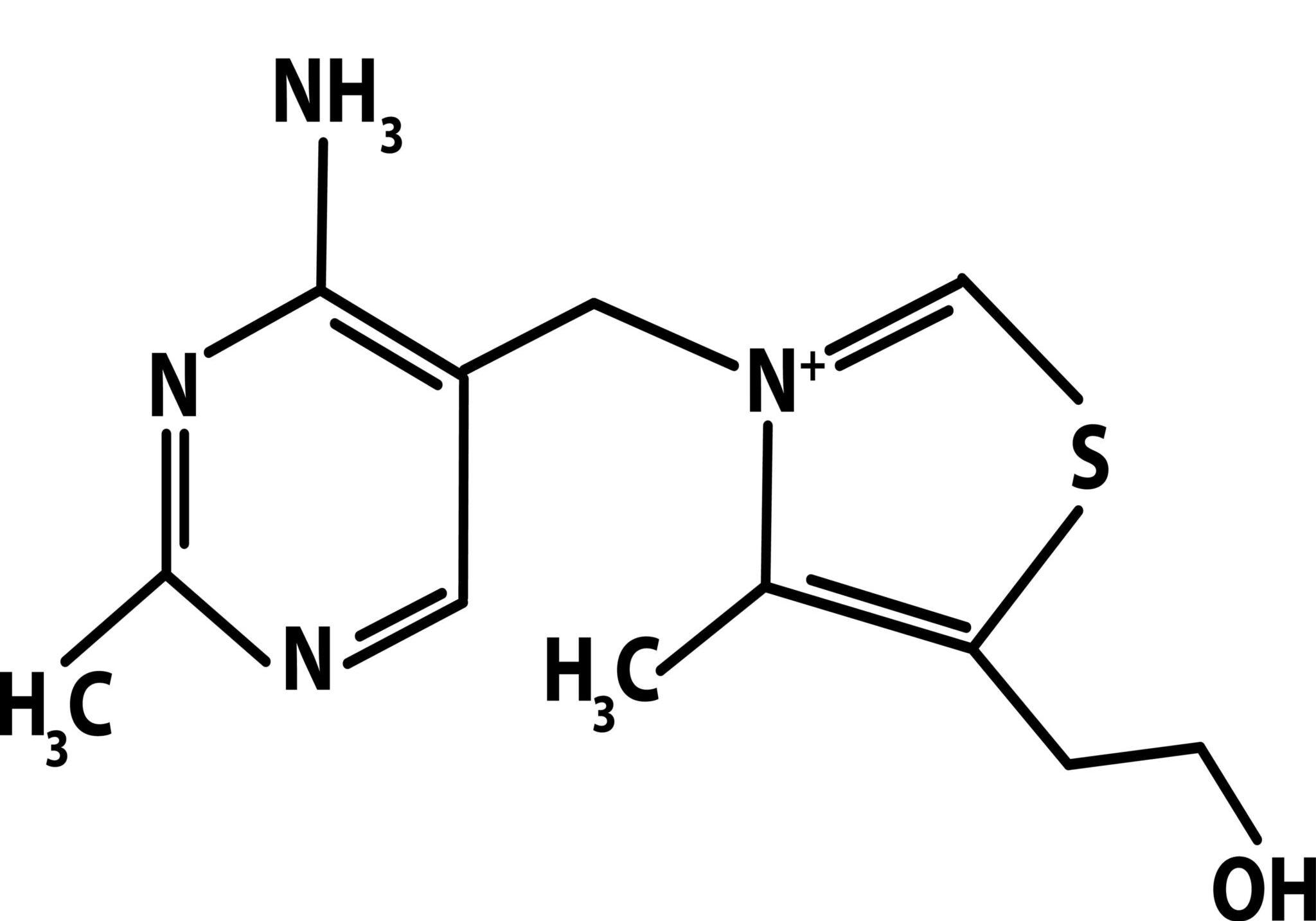 Vitamin B1 Hair Loss